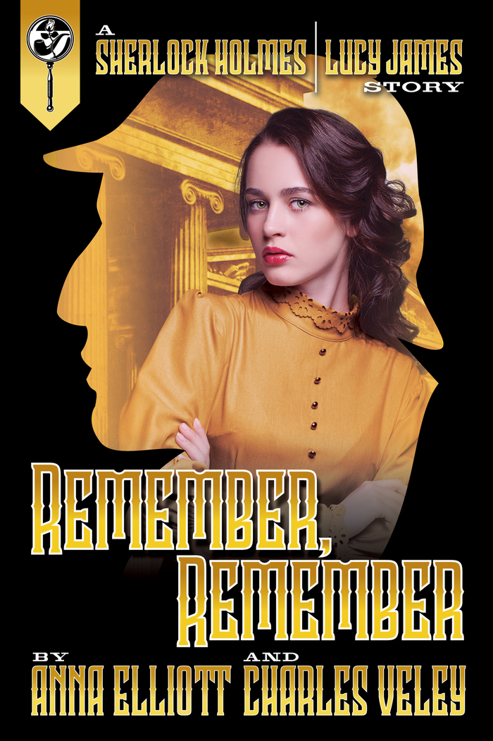 Remember Remember by Anna Elliott and Charles Veley