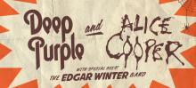 Edgar Alice Purple concert